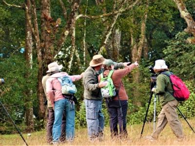 Birdwatching with Samsara Safari